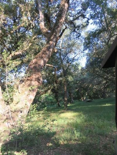 Wharton County Country Home/Acreage For Sale: 13470 County Road 394