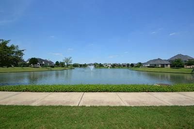 Sugar Land Single Family Home For Sale: 5411 Riverstone Crossing Drive