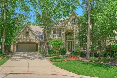The Woodlands Single Family Home For Sale: 14 Treevine Court