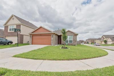 Katy Single Family Home For Sale: 21643 Dean Dale Court