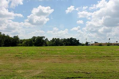 Columbus Residential Lots & Land For Sale: 203 McCormick