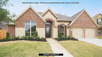 New Caney Single Family Home For Sale: 18824 Collins View Drive