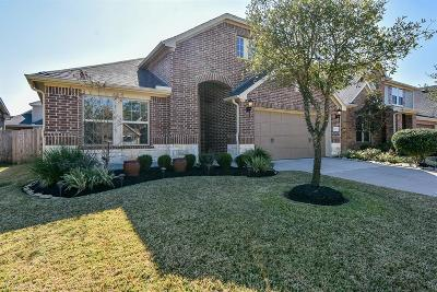 Tomball Single Family Home For Sale: 12503 Ember Village Lane