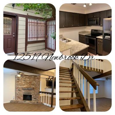 Houston Condo/Townhouse For Sale: 12519 Newbrook Drive