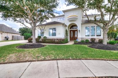Sugar land Single Family Home For Sale: 10935 Ashland Bridge Lane