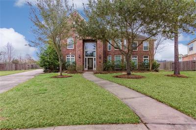Friendswood Single Family Home For Sale: 2801 Cedar Ridge Trail