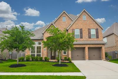 Pearland Single Family Home For Sale: 12411 Floral Park Lane