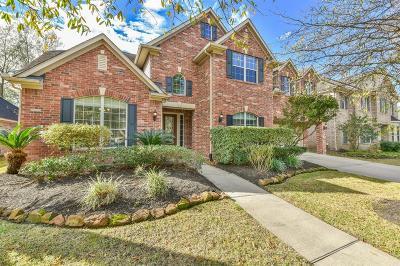 Eagle Springs Single Family Home For Sale: 12522 Honey Creek Trail