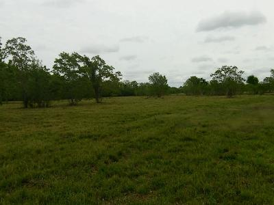 Pearland Residential Lots & Land For Sale: Roy Road