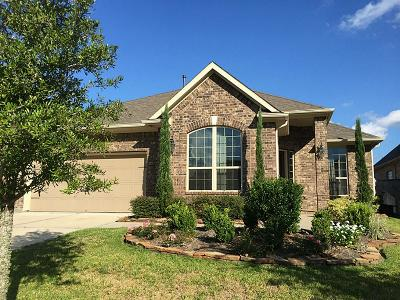 Friendswood Single Family Home For Sale: 711 Timberstone Lane