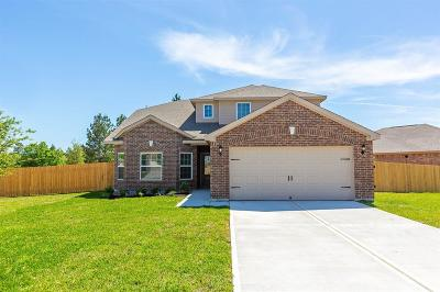 Conroe Single Family Home For Sale: 7670 Dragon Pearls Lane