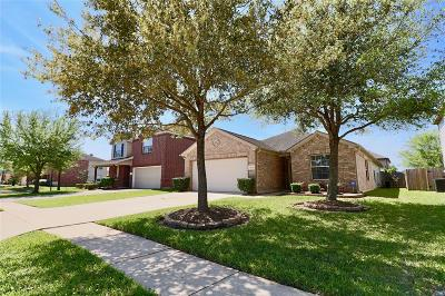 Southern Trails Single Family Home For Sale: 3214 Trail Hollow Drive