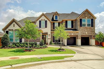 Houston Single Family Home For Sale: 13910 Bell Valley Court