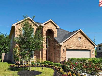 Katy Single Family Home For Sale: 2507 Pines Pointe Drive