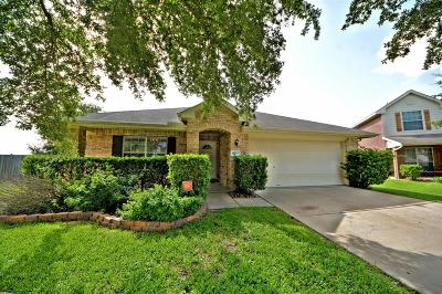 Katy Single Family Home For Sale: 4911 Rainy Heath Court