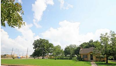 Hempstead TX Single Family Home Option Pending: $130,000