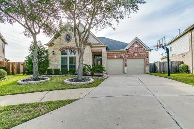 Sugar Land Single Family Home For Sale: 5322 Autumn Rose Lane