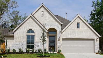 New Caney Single Family Home For Sale: 18810 Capalona Court