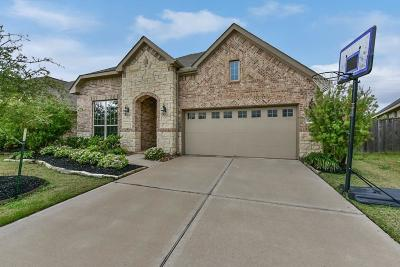 Katy Single Family Home For Sale: 28606 Brush Park Trail