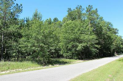 Residential Lots & Land For Sale: 16280 Charles Ray Lane