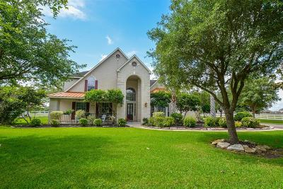 Richmond Single Family Home For Sale: 5910 Grande Gables Drive