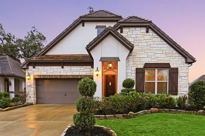 Sugar Land Single Family Home For Sale: 4607 Mayfair Park Court