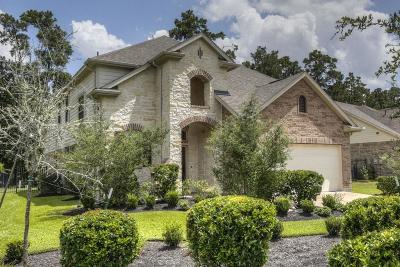The Woodlands Single Family Home For Sale: 46 Wood Drake Place