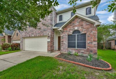 Saddlebrook, Saddlebrook Village, Saddlebrook Ranch Single Family Home For Sale: 8714 Rollick Drive