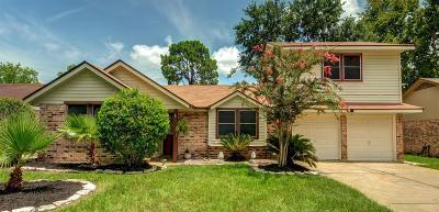 Houston Single Family Home For Sale: 19322 Gagelake Lane