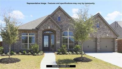 New Caney Single Family Home For Sale: 18852 Collins View Drive