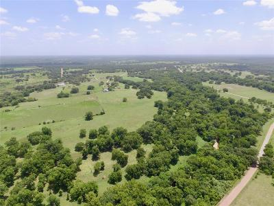 Farm & Ranch For Sale: County Road 1