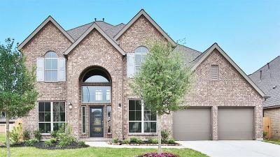 Pearland Single Family Home For Sale: 13613 Imperial Island Lane