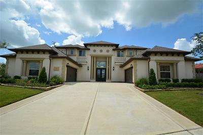 Sugar Land Single Family Home For Sale: 5206 River Glade Lane