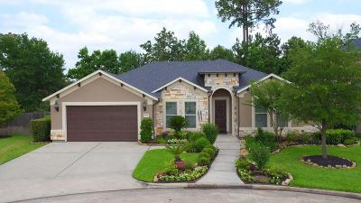 Shenandoah Single Family Home For Sale: 28986 Twisted Oak Drive
