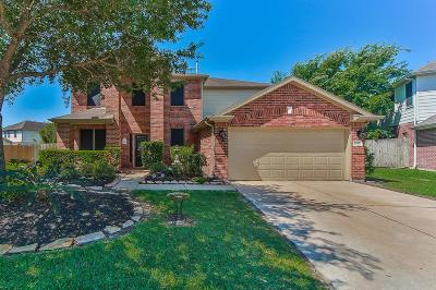 Katy Single Family Home For Sale: 2202 Rocky Hollow Lane