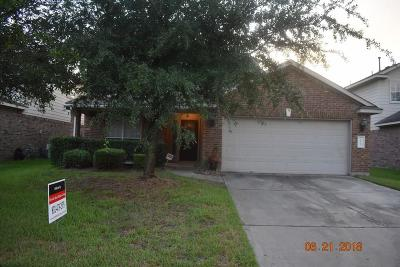 Houston Single Family Home For Sale: 19943 Imperial Stone Drive