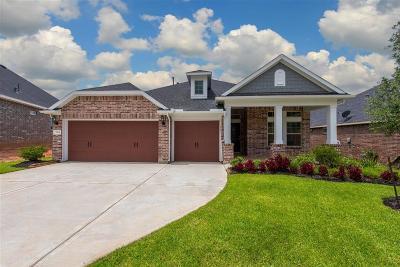 Conroe Single Family Home For Sale: 313 Park Terrace
