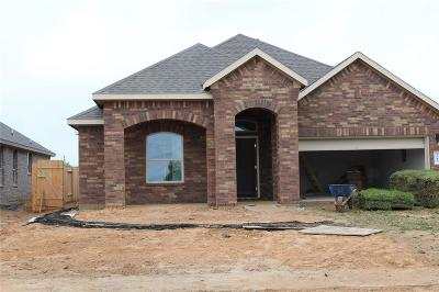 Pearland Single Family Home For Sale: 3710 Lockheed Street