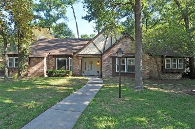Houston Single Family Home For Sale: 2031 River Falls Drive