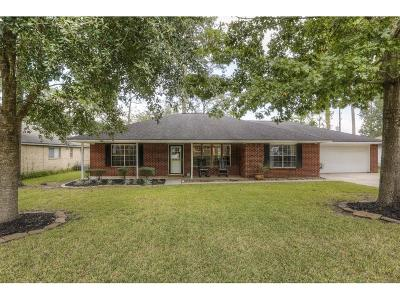 Single Family Home For Sale: 28826 Champion Oaks Drive