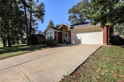 Conroe Single Family Home For Sale: 12080 La Salle River Road
