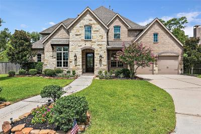 Houston Single Family Home For Sale: 6122 Majestic Pines Drive