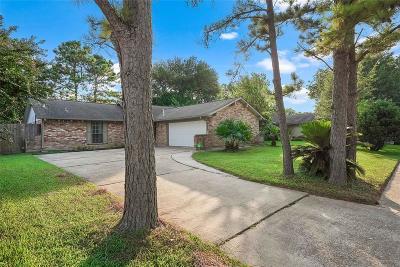 Houston Single Family Home For Sale: 10326 Sagetrail Drive