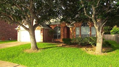 Katy Single Family Home For Sale: 23027 S Warmstone Way