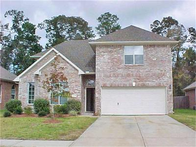 Spring Single Family Home For Sale: 3031 Trinity Pass Court