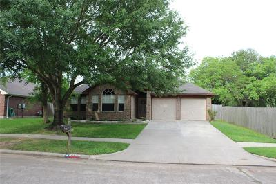 Tomball Single Family Home For Sale: 19410 Gladewater Drive