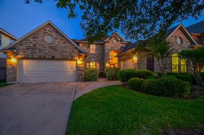 Fort Bend County Single Family Home For Sale: 25615 Durango Falls Lane