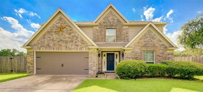 Pearland Single Family Home For Sale: 3904 Ivywood Drive