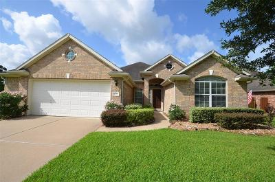 Katy Single Family Home For Sale: 6303 Alicia Way Dr