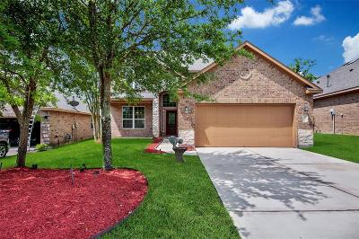 Single Family Home For Sale: 210 Black Swan Place